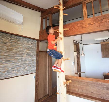 家の中で木登りだってできるよ